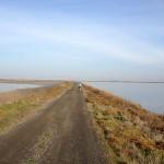 Rave Run – San Francisco Bay Trail