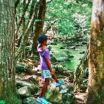 The Smoky Mountains – Easy Trails for Children