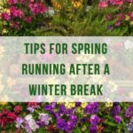 Tips for Spring Running after a Winter Break