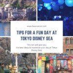 Tips for a Fun day at Tokyo Disney Sea